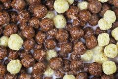 Wyśmienicie czekoladowe kukurydzane piłki w mleku Obraz Stock