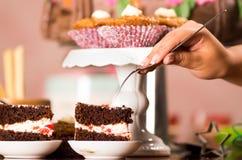 Wyśmienicie czekoladowego torta kawałki z kremowym podsadzkowym obsiadaniem na małych talerzach, ręki mienia rozwidlenie chwyta k Zdjęcia Royalty Free