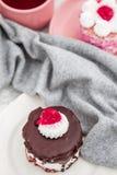 Wyśmienicie Czekoladowy tort z Kwaśnymi wiśniami na Białym tle Fotografia Royalty Free