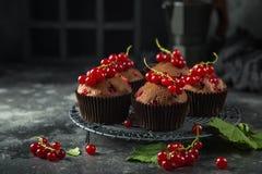 Wyśmienicie czerwonego rodzynku i czekolady muffins zdjęcie stock