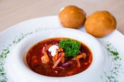 Wyśmienicie czerwony borscht z kwaśną śmietanką i ziele na białym talerzu Zdjęcie Stock