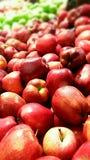 Wyśmienicie czerwony jabłko zdjęcia royalty free