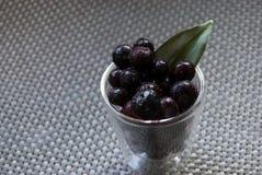 Wyśmienicie deser czarne jagody Zdjęcia Stock