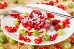 Wyśmienicie domowej roboty kulebiak z świeżymi jagodami Fotografia Stock