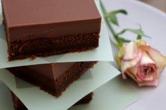 Wyśmienicie fudge kawałki, chocolatey domowej roboty czekoladowy tort fotografia royalty free