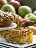 Wyśmienicie jabłczany kulebiak Zdjęcia Royalty Free