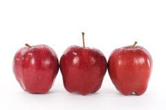 wyśmienicie jabłko czerwień Obrazy Royalty Free