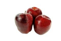 wyśmienicie jabłko czerwień trzy Obraz Royalty Free