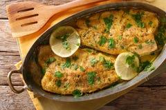 Wyśmienicie jedzenie: pstrąg ryba z czosnek cytryny masła kumberlandem, parsl obrazy royalty free