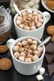 Wyśmienicie kakao z marshmallow i ciastkami, vertical, odgórny widok obrazy royalty free