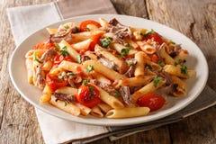 Wyśmienicie karmowy makaron z wieprzowiną, pomidorami i ziele w górę talerza piec ciągnącymi, dalej horyzontalny zdjęcie royalty free