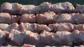 Wyśmienicie kebab gotujący na grillu w górę zdjęcie wideo