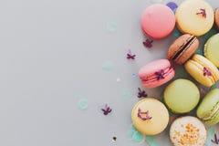 Wyśmienicie kolorowi macaroons na modnych pastelowych szarość tapetują z li Obraz Stock
