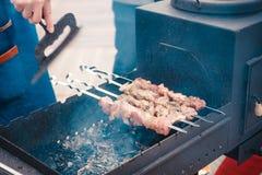 Wyśmienicie mięso gotujący na ogieniu Obraz Stock