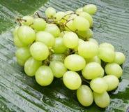 Wyśmienicie mokrzy winogrona na bananowym liściu Fotografia Royalty Free