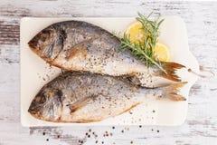 Owoce morza, luksusowy śródziemnomorski styl. Zdjęcie Stock