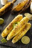 Wyśmienicie Piec na grillu Meksykańska kukurudza zdjęcie royalty free