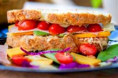 Wyśmienicie przyglądająca kolorowa kanapka na talerzu zdjęcia stock