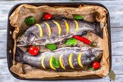 Wyśmienicie surowe pstrąg ryba przygotowywali dla piec z grulami, br Obraz Stock