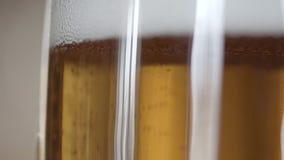 Wyśmienicie szkicu piwo zbiory