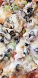 Wyśmienicie tandetna pizza zdjęcia royalty free