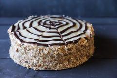Wyśmienicie tort z dokrętka układu scalonego i zmrok czekolady dekoracją Zdjęcie Stock