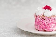 Wyśmienicie tort z kwaśnymi wiśniami na białym tle Fotografia Royalty Free