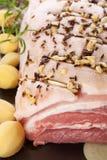 Wyśmienicie wieprzowina brzucha tło. zdjęcia stock