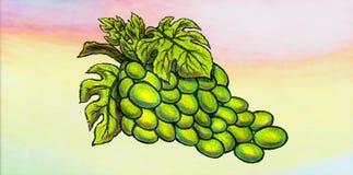 Wyśmienicie zielona winorośl i psychodeliczny tło royalty ilustracja