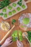 Wyśmienicie zielone kluchy z szpinaka ciastem faszerowali z serem carpaccio kuchni doskonale stylu życia, jedzenie luksus włoski Zdjęcie Royalty Free