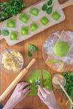 Wyśmienicie zielone kluchy z szpinaka ciastem faszerowali z serem carpaccio kuchni doskonale stylu życia, jedzenie luksus włoski Zdjęcia Royalty Free