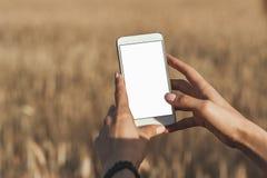 Wyśmiewa w górę smartphone w rękach dziewczyna na tła polu, obraz stock