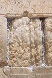 Wy ściana, Jerozolima, Izrael Fotografia Stock