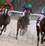 Wyścigi konny. Zdjęcie Stock