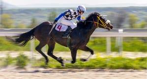 Wyścigi konny dla nagrody Zdjęcia Royalty Free