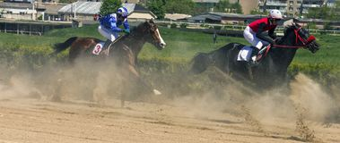 Wyścigi konny dla nagrody Obrazy Stock