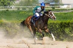 Wyścigi konny dla nagrody ` Probni ` Zdjęcie Royalty Free