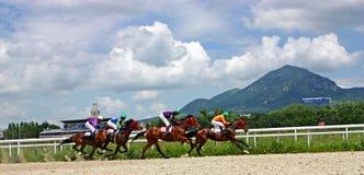 Wyścigi konny w Pyatigorsk Obrazy Stock
