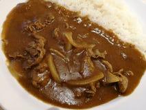 Wyśmienicie curry Zdjęcie Stock