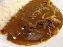 Wyśmienicie curry Zdjęcie Royalty Free