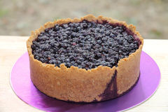 Wyśmienicie czarna jagoda kulebiak na purpurowym piedestale Obrazy Royalty Free