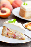 Wyśmienicie domowej roboty brzoskwinia kulebiak Zdjęcie Royalty Free