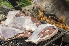 Wyśmienicie grill Zdjęcia Stock