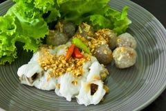 wyśmienicie karmowy tajlandzki Obraz Royalty Free