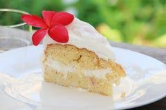 Wyśmienicie kokosowy tort z plumeria ruba kwiatem Fotografia Stock