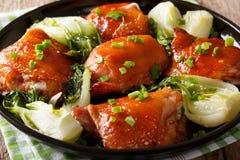 Wyśmienicie pieczonych kurczaków uda z bok choy i zielonych cebul cl Obraz Stock