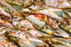 Wyśmienicie rybi jedzenie Zdjęcia Royalty Free
