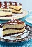 Wyśmienicie tort Zdjęcia Royalty Free