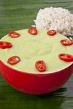 Wyśmienicie zielony kokosowy pistacjowy curry Obrazy Stock