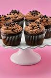 Wyśmienitej czekolady lukrowe babeczki Fotografia Royalty Free